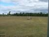 field2_1