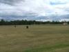 field3_1
